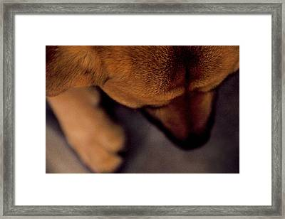 My Soul To Keep Framed Print