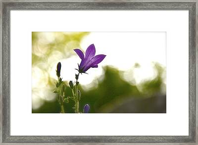 My Time Framed Print