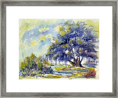 My Tribute To Drysdale Framed Print by Jacqueline Juge