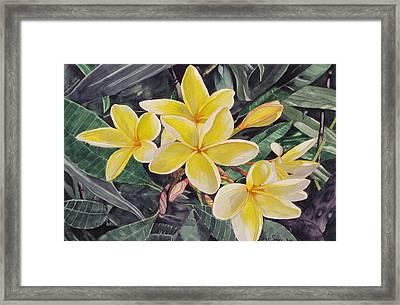 My Trubute To Marita Framed Print by Debi Singer