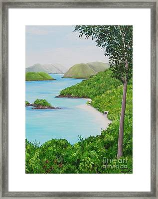 My Trunk Bay Framed Print