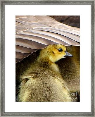 My Umbrella Framed Print by Heather King
