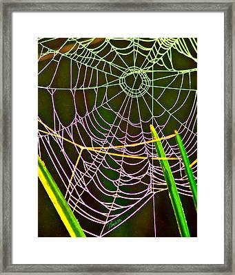 Framed Print featuring the photograph My Vanity by Tom Cameron