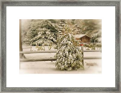 My View Framed Print by Mary Timman