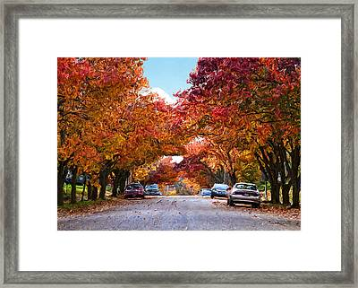 My Way Home.... Framed Print
