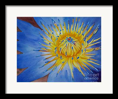 Sunburst Floral Still Life Paintings Framed Prints