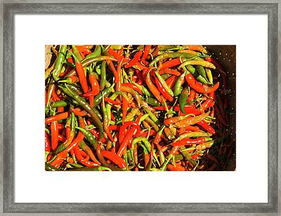 Myanmar Mt Popa Red And Green Chilies Framed Print by Inger Hogstrom