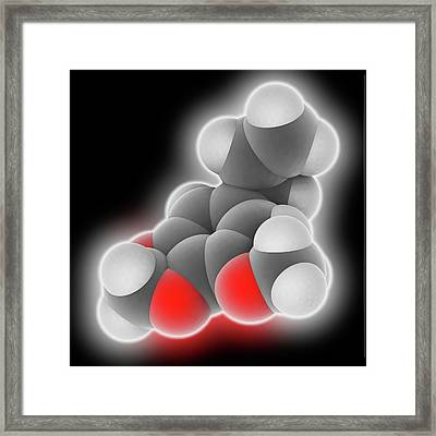 Myristicin Molecule Framed Print by Laguna Design