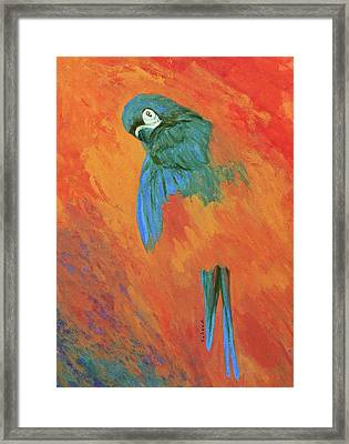Framed Print featuring the painting Mysterious Macaw by Margaret Saheed