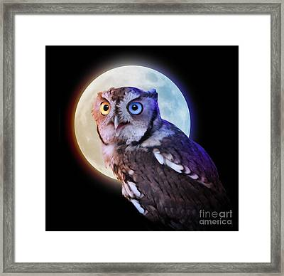 Mysterious Owl Animal At Night With Full Moon Framed Print by Angela Waye