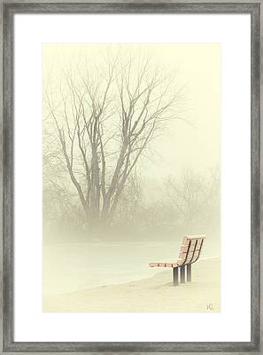 Mysterious Peace Framed Print by Karol Livote