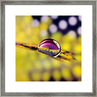 Mysterious Framed Print