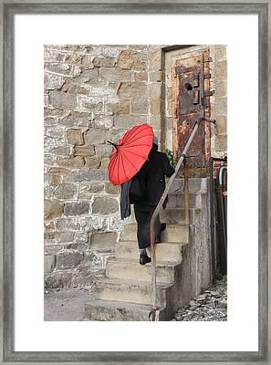 Mystery Lady Framed Print by Mark Murphy