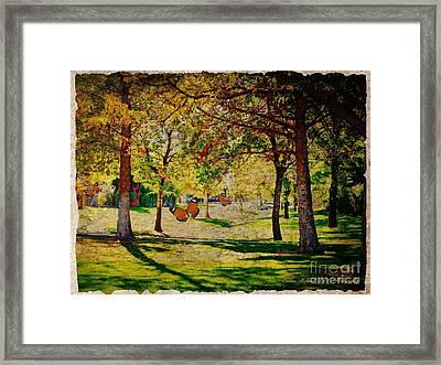 Mystery Of The Trees  Framed Print by Bobbee Rickard