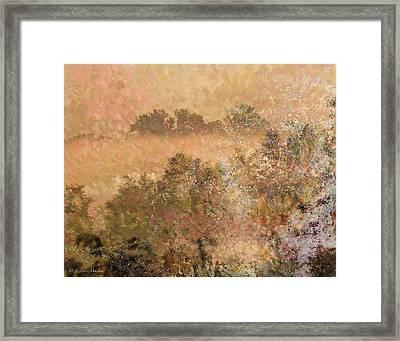Mystery Swamp Sunrise Framed Print by J Larry Walker