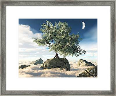 Mystery Tree Framed Print by Eric Nagel