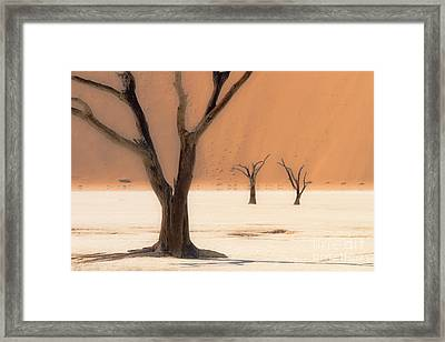 Framed Print featuring the photograph Mystic Africa by Juergen Klust