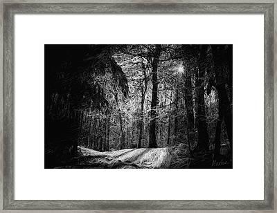 Mystic Forest Framed Print by Marina Likholat