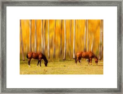 Mystic Horses  Framed Print