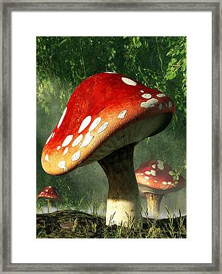 Mystic Mushroom Framed Print by Daniel Eskridge