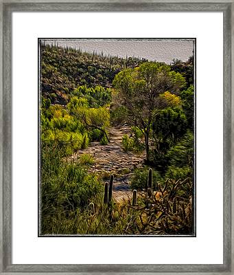 Mystic Wandering Framed Print by Mark Myhaver