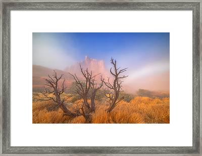 Mystic Wonders Framed Print by Darren  White