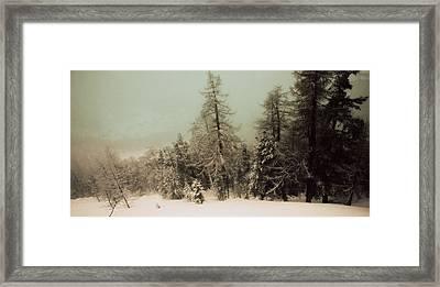 Mystic Woods Framed Print by Vittorio Chiampan