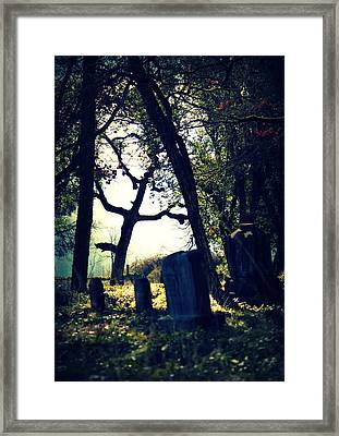 Framed Print featuring the photograph Mystical Fantasies by Melanie Lankford Photography