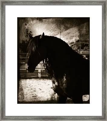 Mystical Friesian Framed Print