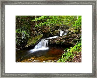 Mystical Magical Place Framed Print by Frozen in Time Fine Art Photography
