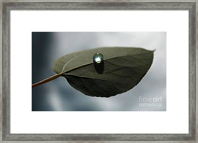 Mystical Moments Framed Print by Krissy Katsimbras