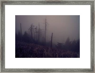 Mystical Morning Fog Framed Print by Dan Sproul