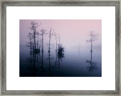 Mystical Morning On The Lake Framed Print