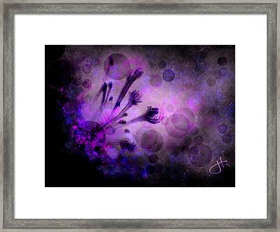 Mystical Nature Framed Print