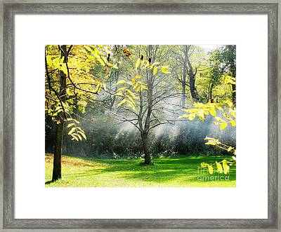 Framed Print featuring the photograph Mystical Parkland by Nina Silver