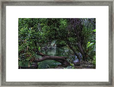 Mystical River Framed Print by Jacque The Muse Photography