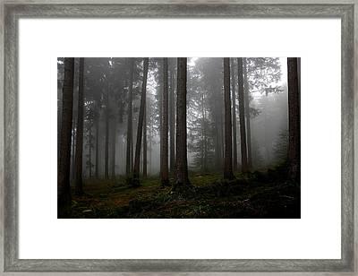 Mystify Framed Print