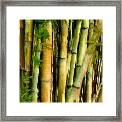Mystique Beauty- Bamboo Artwork Framed Print by Lourry Legarde