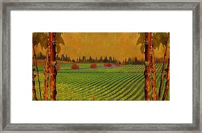 Mythical Vineyard Framed Print by Jeff Burgess