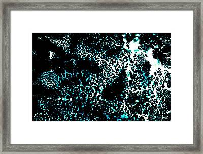 Na Forty Eight Framed Print