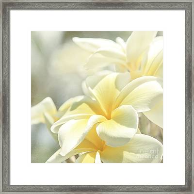 Framed Print featuring the photograph Na Lei Pua Melia Aloha E Ko Lele by Sharon Mau