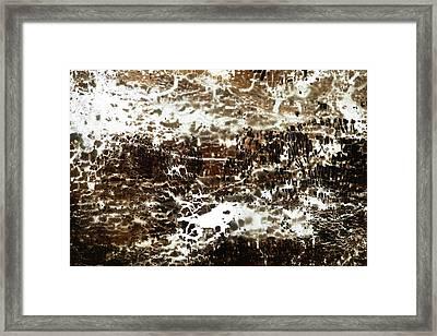 Na One Framed Print by Kika Pierides