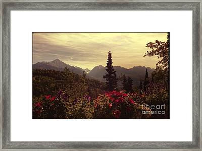 Framed Print featuring the photograph Nadine's View by J Ferwerda
