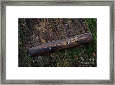 Nailed Wood Framed Print by Jolanta Meskauskiene
