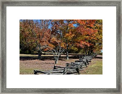 Naked And Colorful  Framed Print