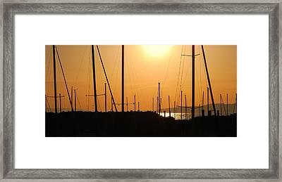 Naked Masts Framed Print by Steven Milner