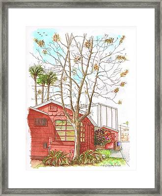 Naked Tree And Brown House In Cahuenga Blvd., Hollywood, California Framed Print by Carlos G Groppa