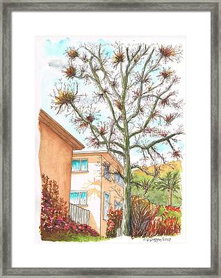 Naked Tree In Laurel And Selma Avenue, West Hollywood, California Framed Print by Carlos G Groppa