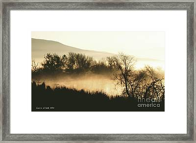 Naked Trees 2 Framed Print by Artist and Photographer Laura Wrede