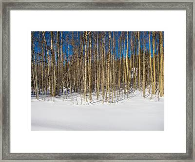 Naked Wilderness Framed Print by Mike Lee